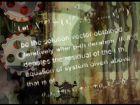 vlcsnap-2015-08-09-23h34m52s128