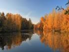 Grillenburg - Oberer Teich