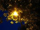 Mitternachtssommerlicht